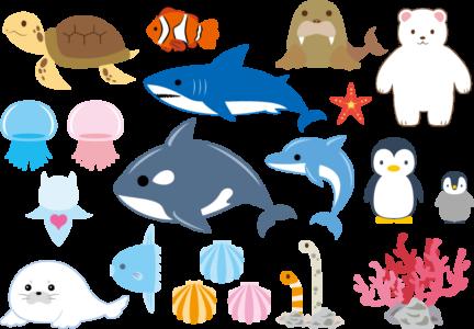 サンシャイン水族館の混雑予想!長期休みは平日でも混雑する?!